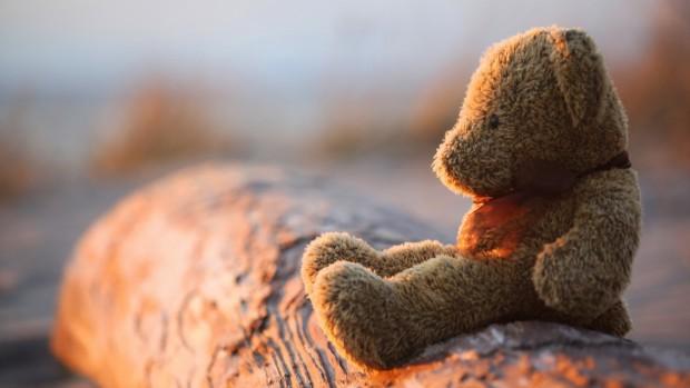 Ảnh đại diện chú gấu cô đơn