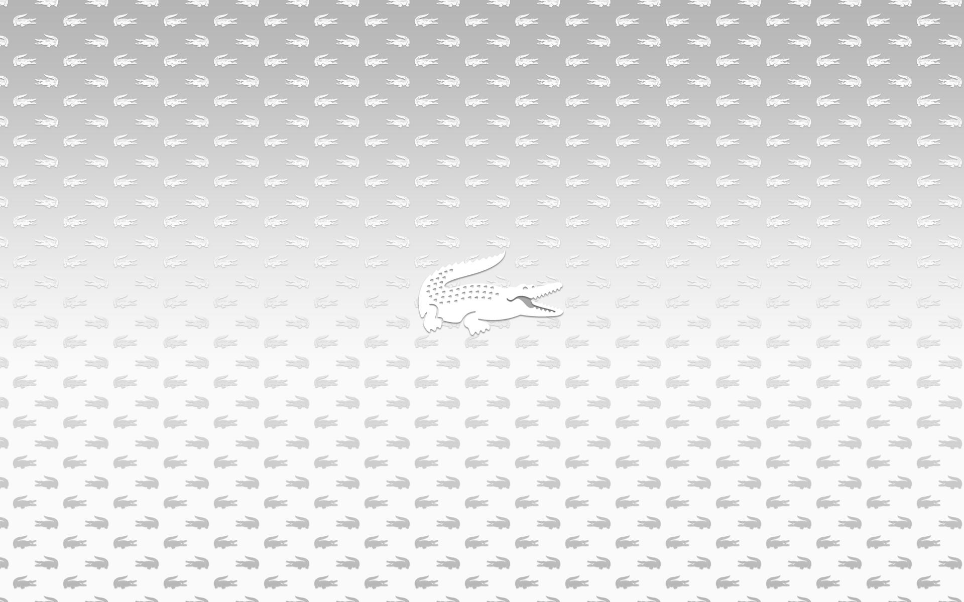 Hình nền trắng đẹp (104)