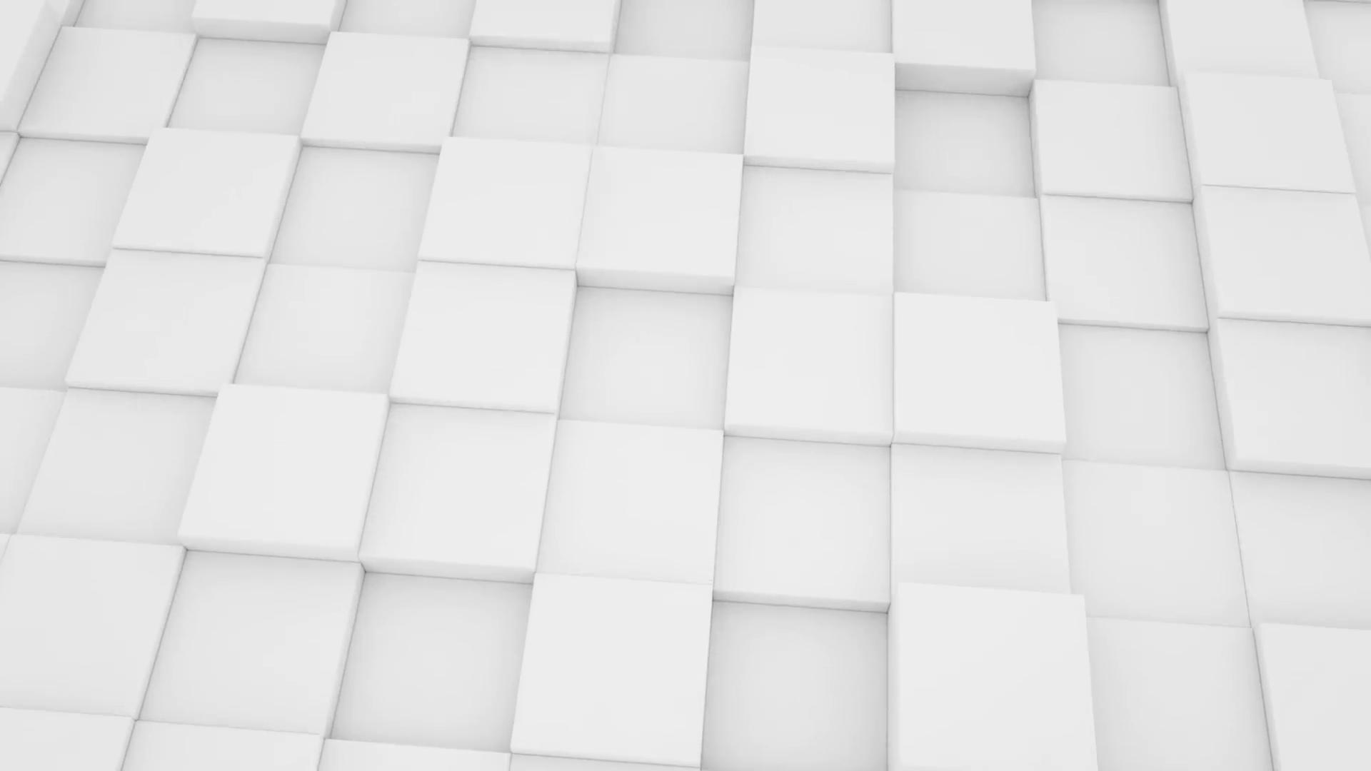 Hình nền trắng đẹp (107)