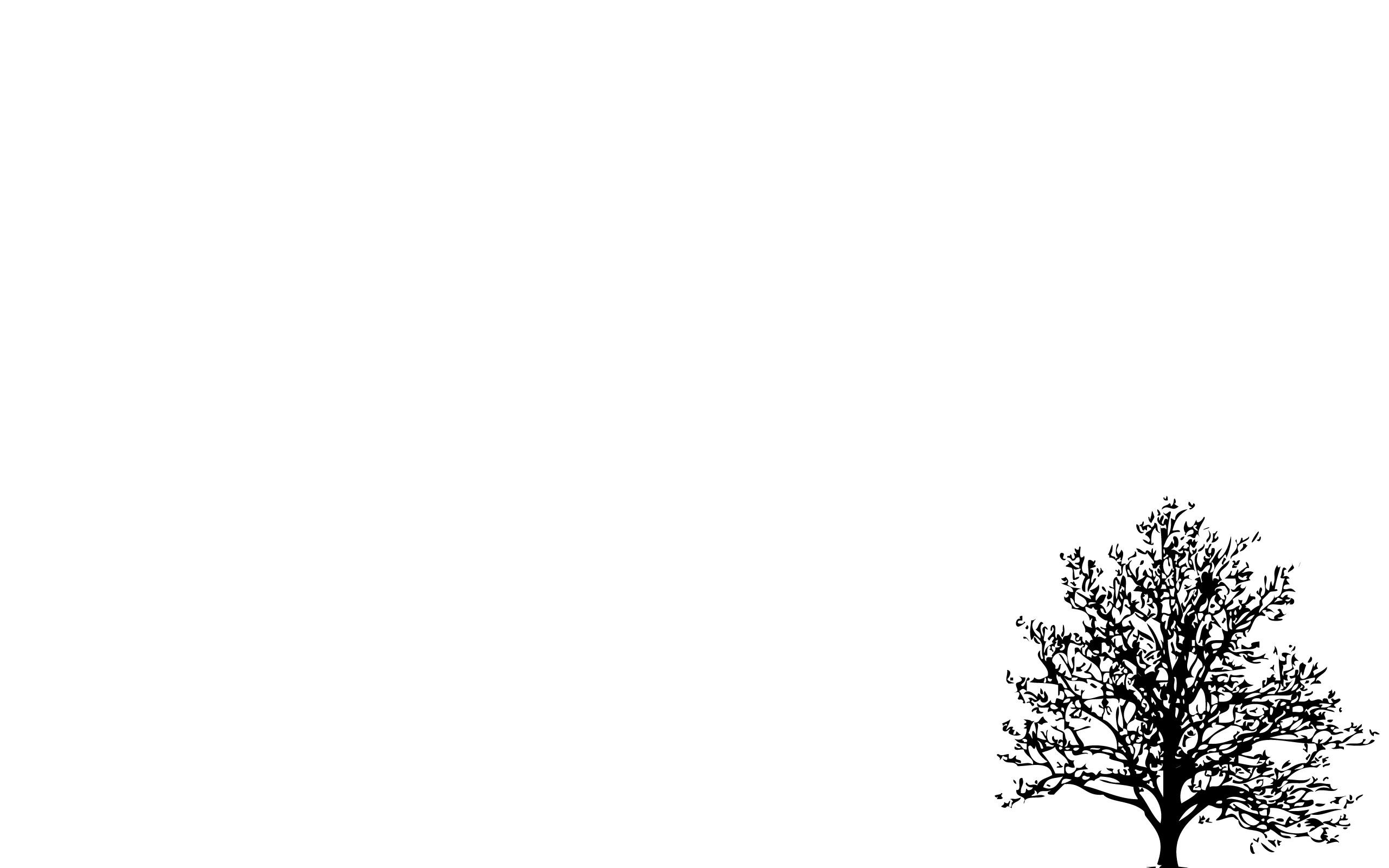 Hình nền trắng đẹp (14)