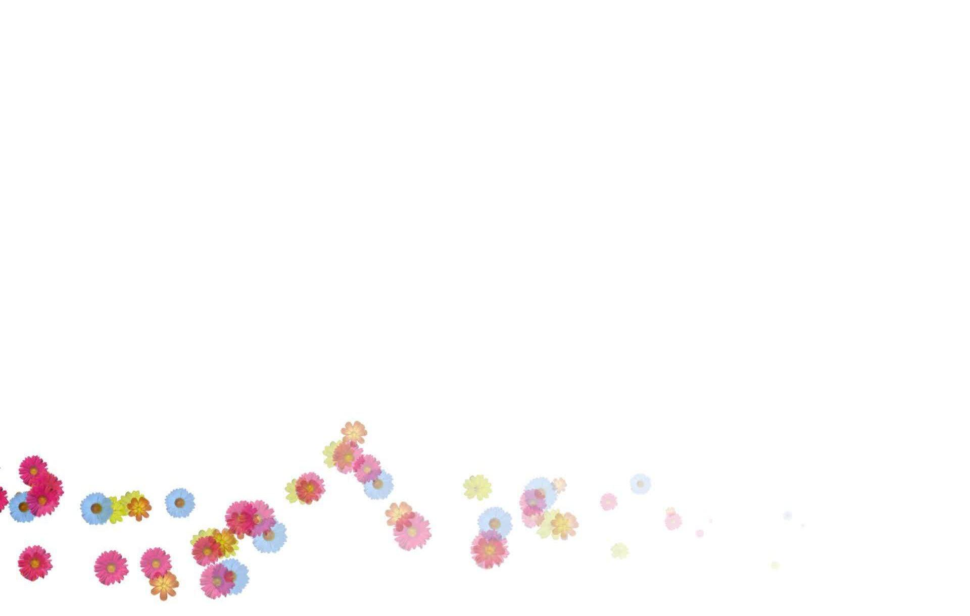 Hình nền trắng đẹp (5)