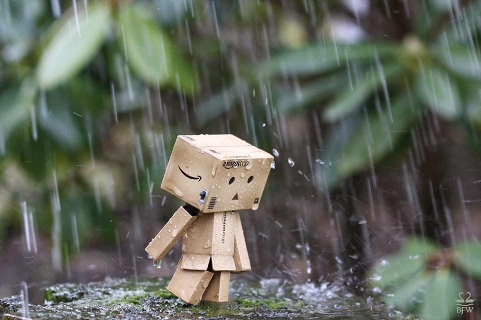Hình ảnh mưa buồn