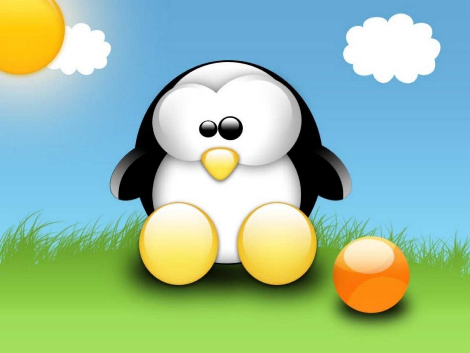 Ảnh chú chim cánh cụt ngộ ngĩnh