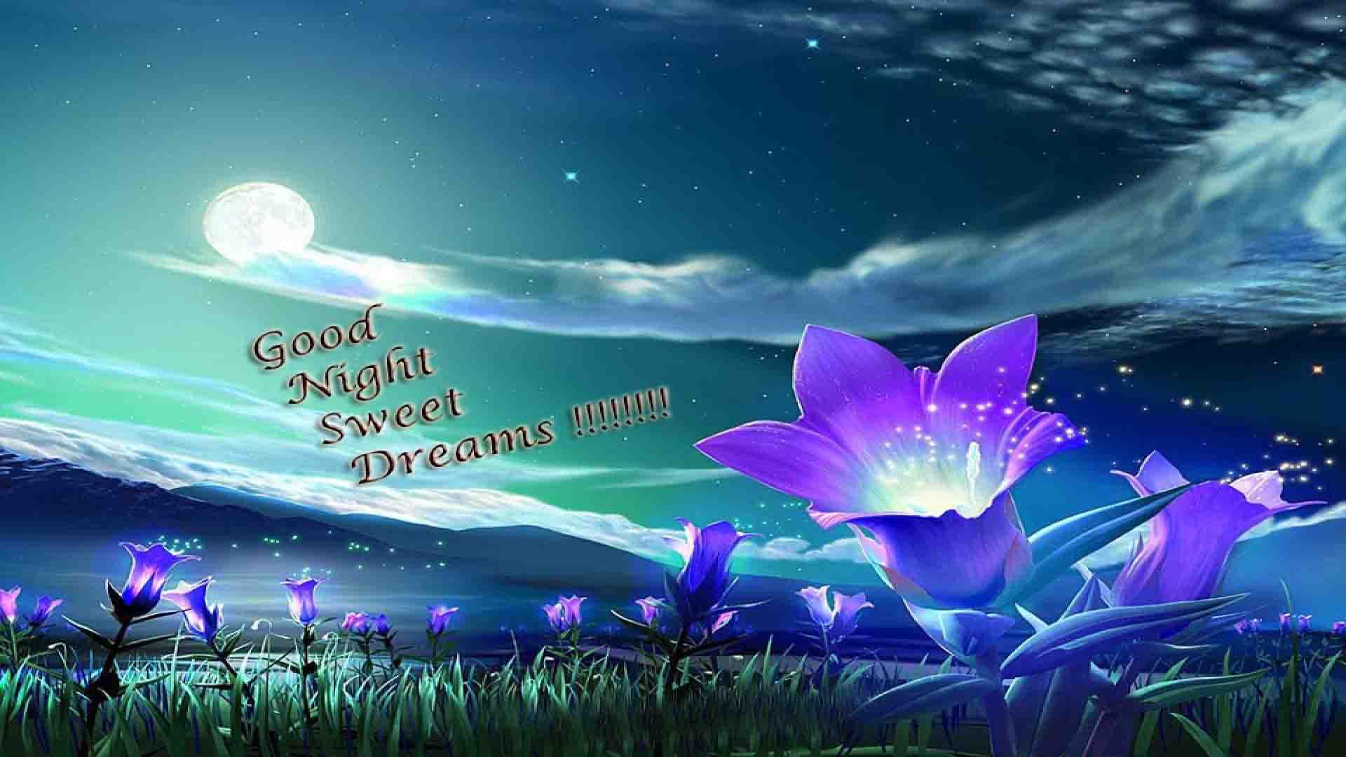Ảnh chúc ngủ ngon sweet dream