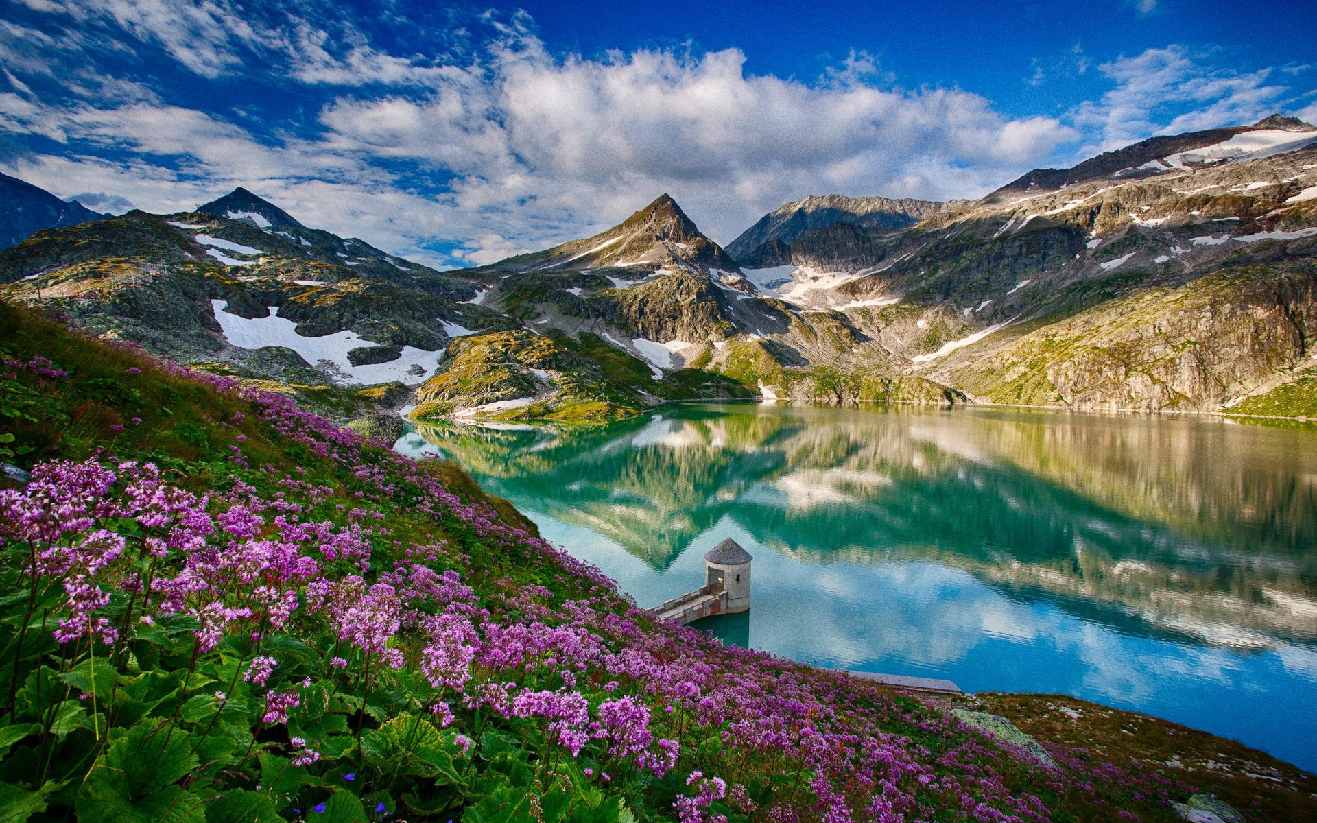 Beautiful spring mountains lake flowers