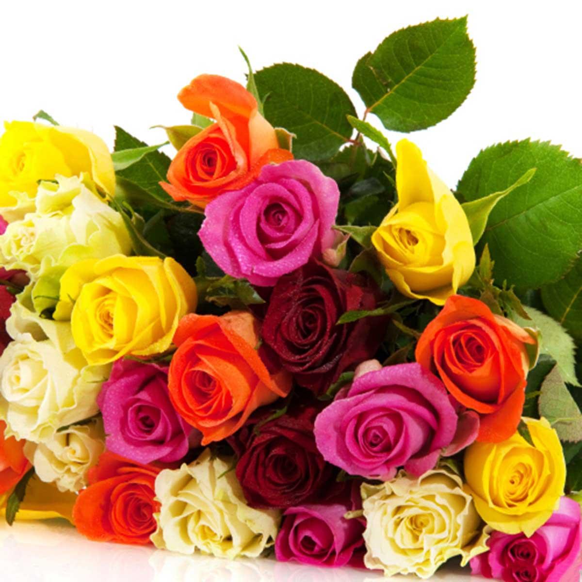 Hình ảnh bó hoa hồng nhiều màu đẹp