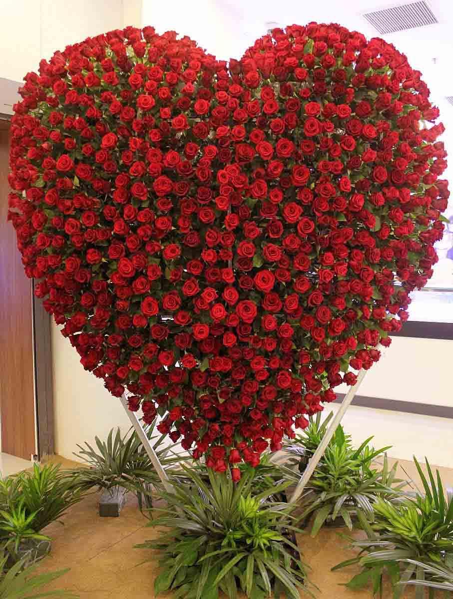 Hình ảnh hoa hồng xếp hình trái tim đẹp nhất