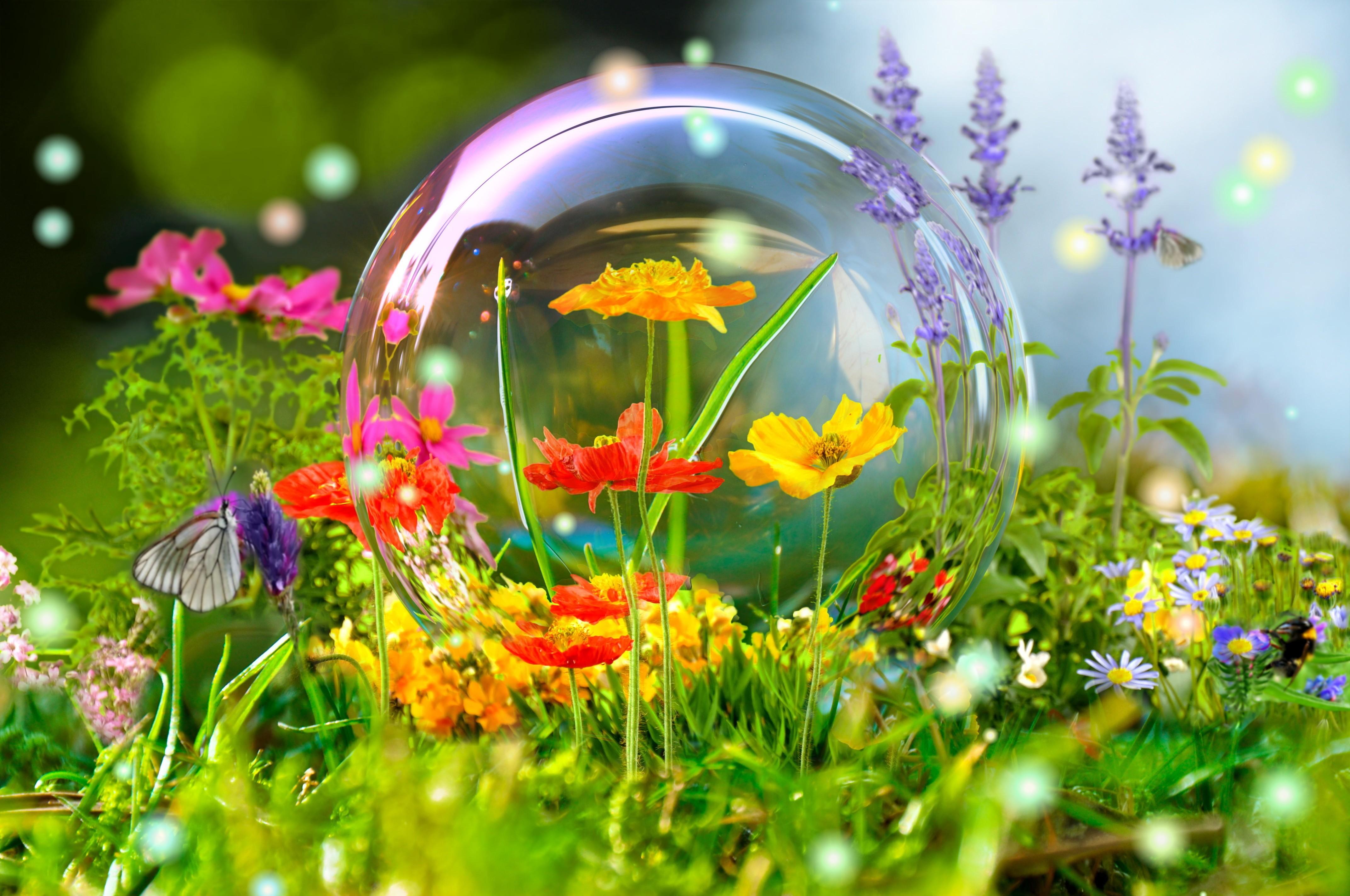 Hình ảnh mùa xuân đẹp nhất (2)