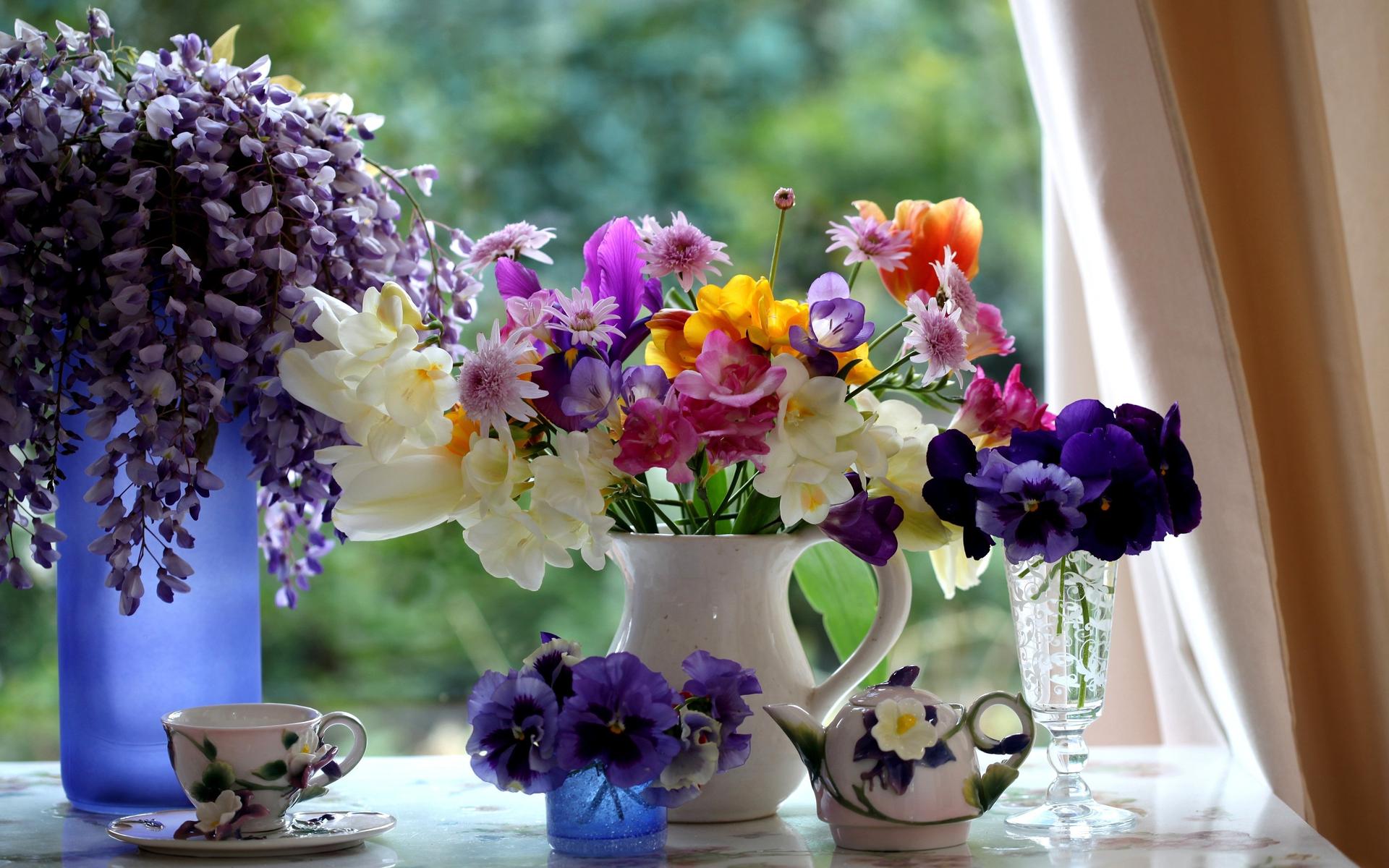 Hình ảnh mùa xuân đẹp nhất