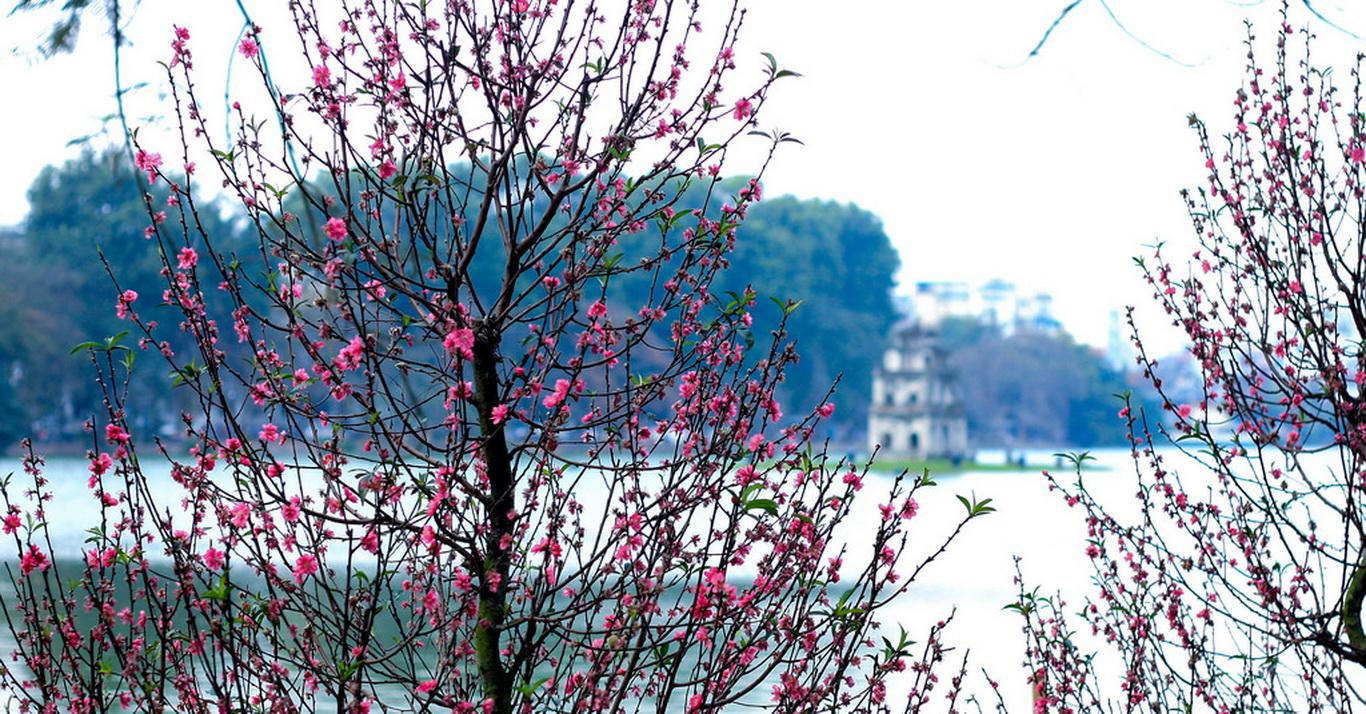 Hình ảnh mùa xuân Hà Nội