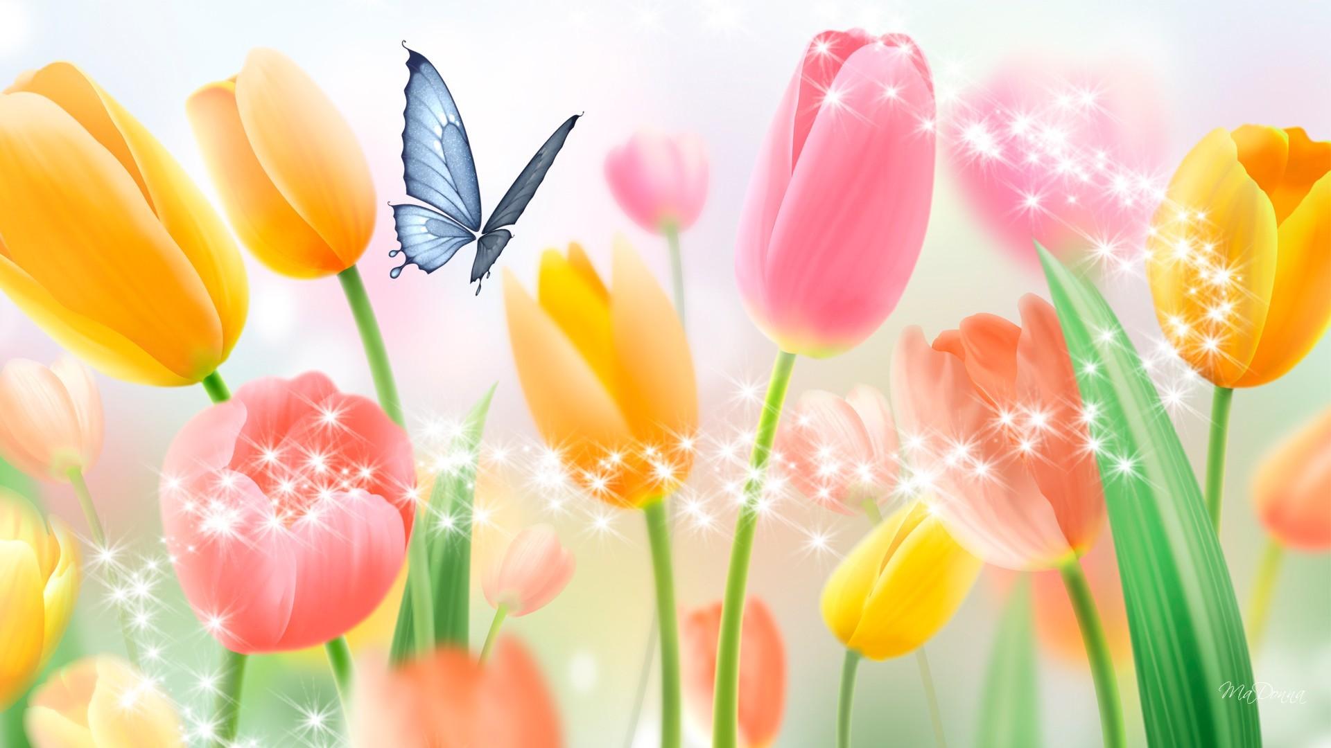 Hình ảnh mùa xuân những bông hoa tulip đẹp