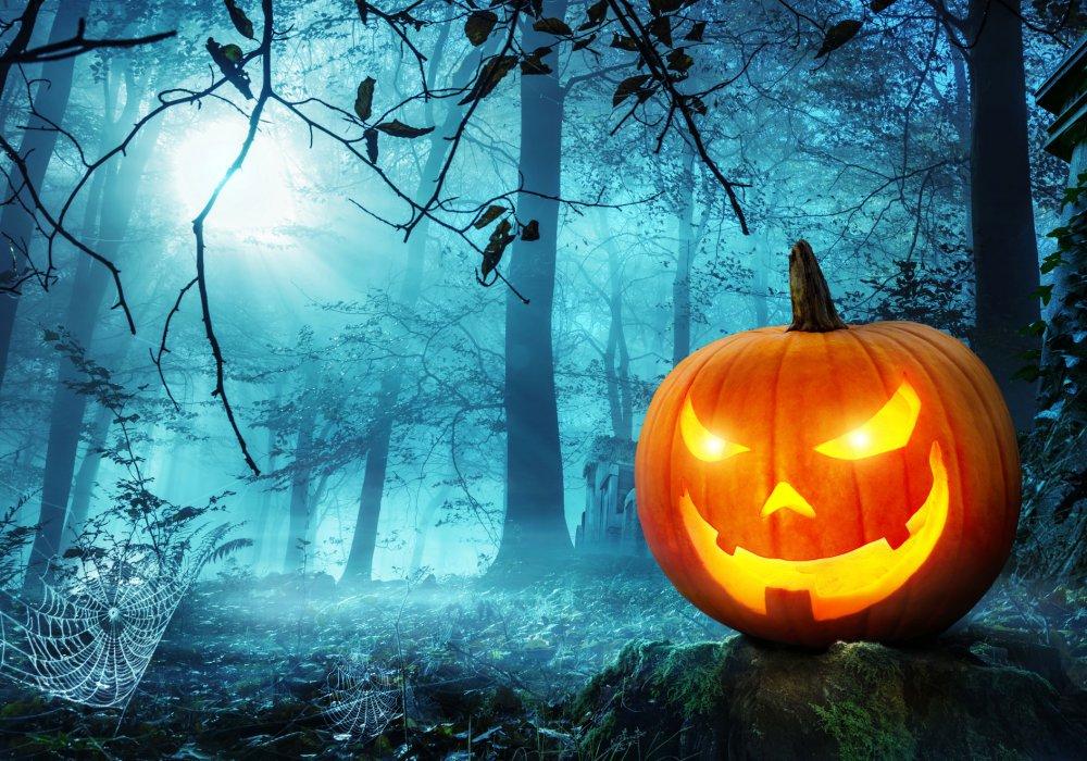 Ảnh Halloween (5)