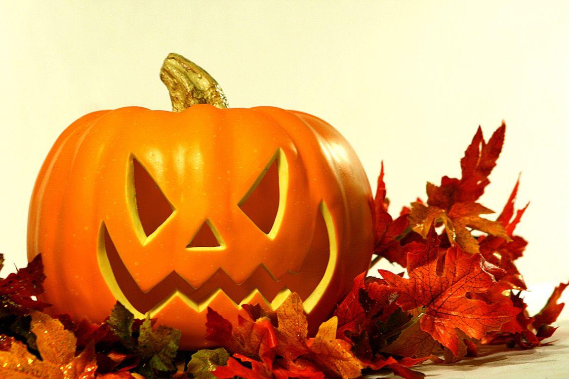 Ảnh Halloween đẹp nhất (2)