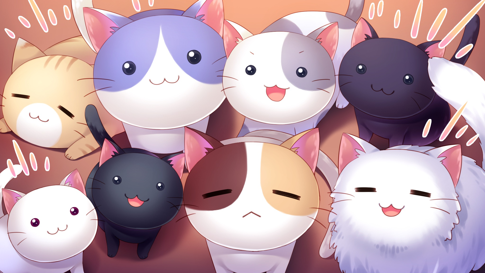 Hình nền những chú mèo anime đẹp