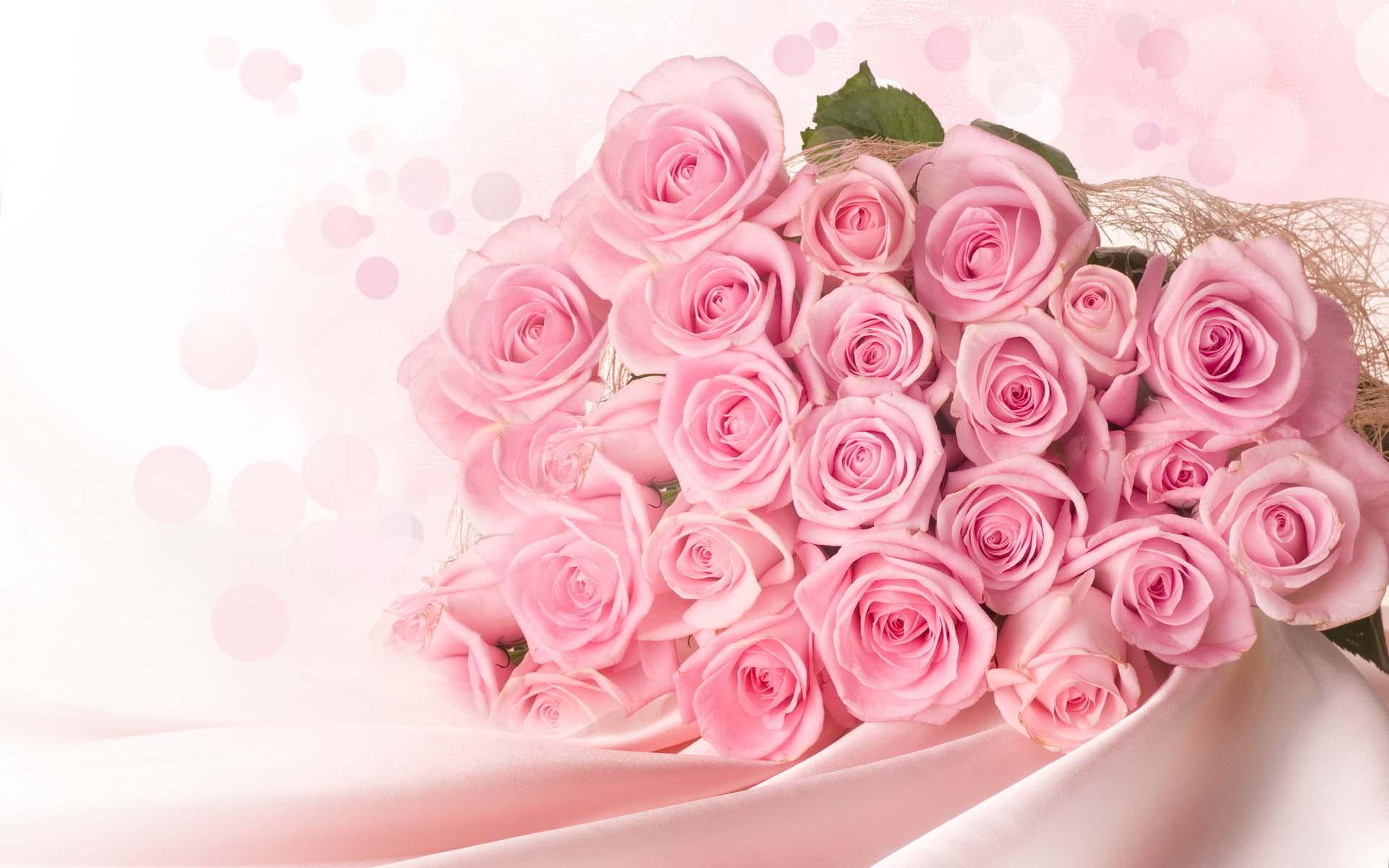 Ảnh nền hoa hồng đẹp