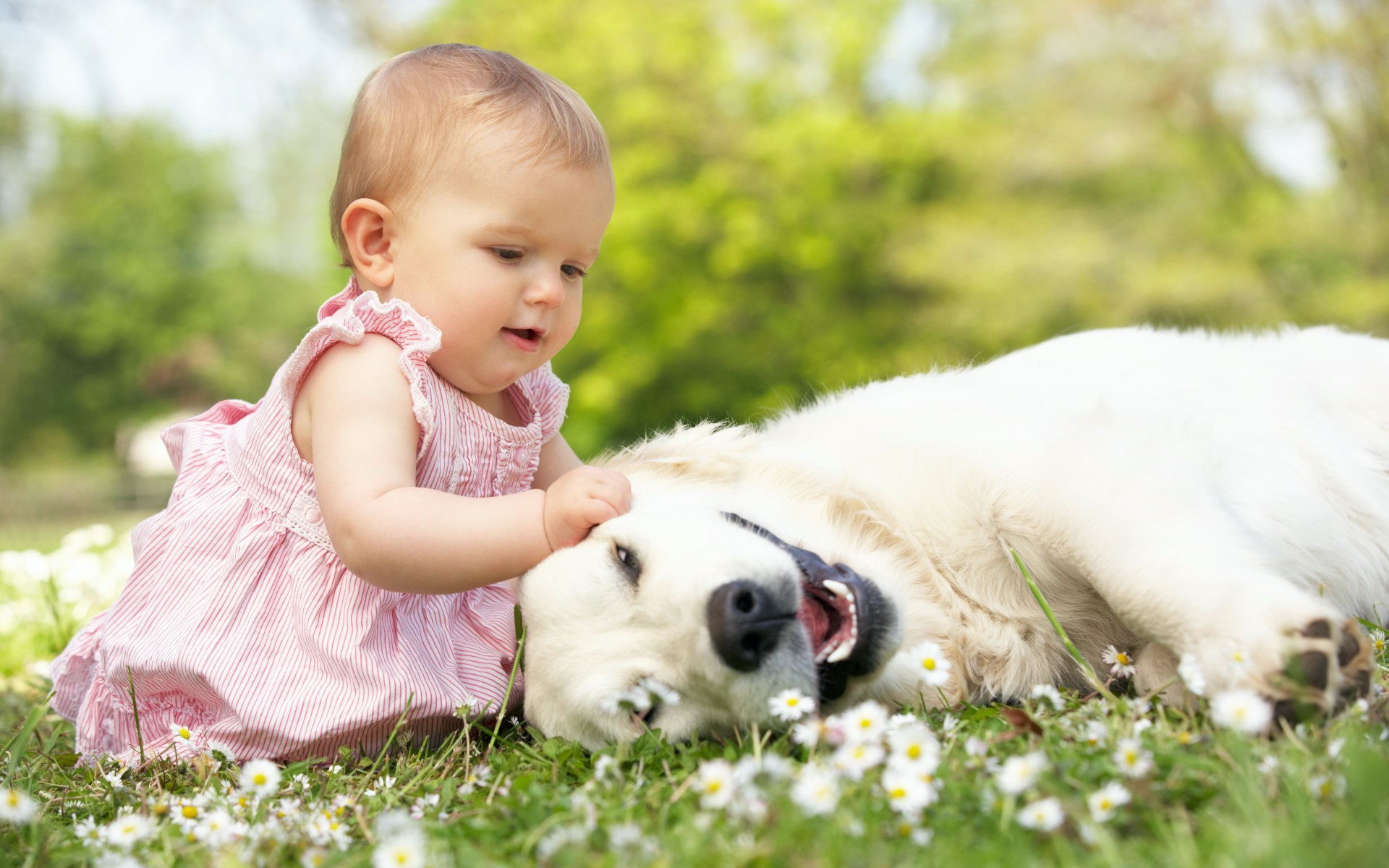 Hình ảnh em bé chơi đùa với chú cún dễ thương
