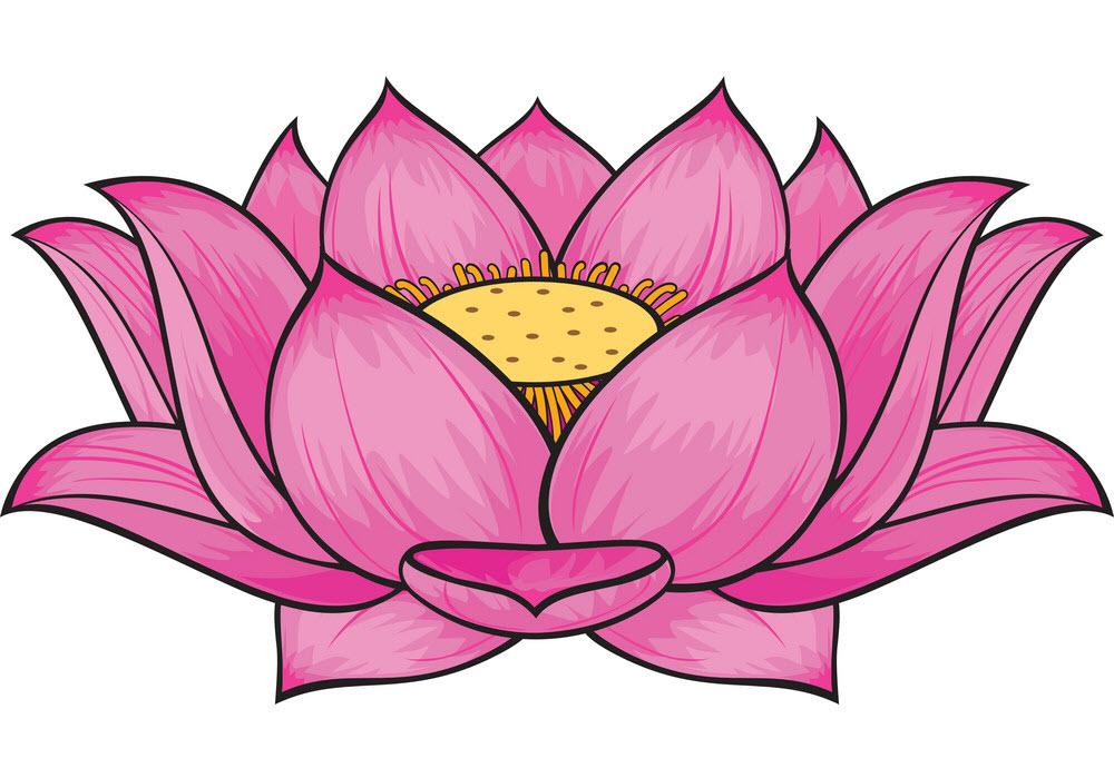 Hình ảnh vẽ hoa sen