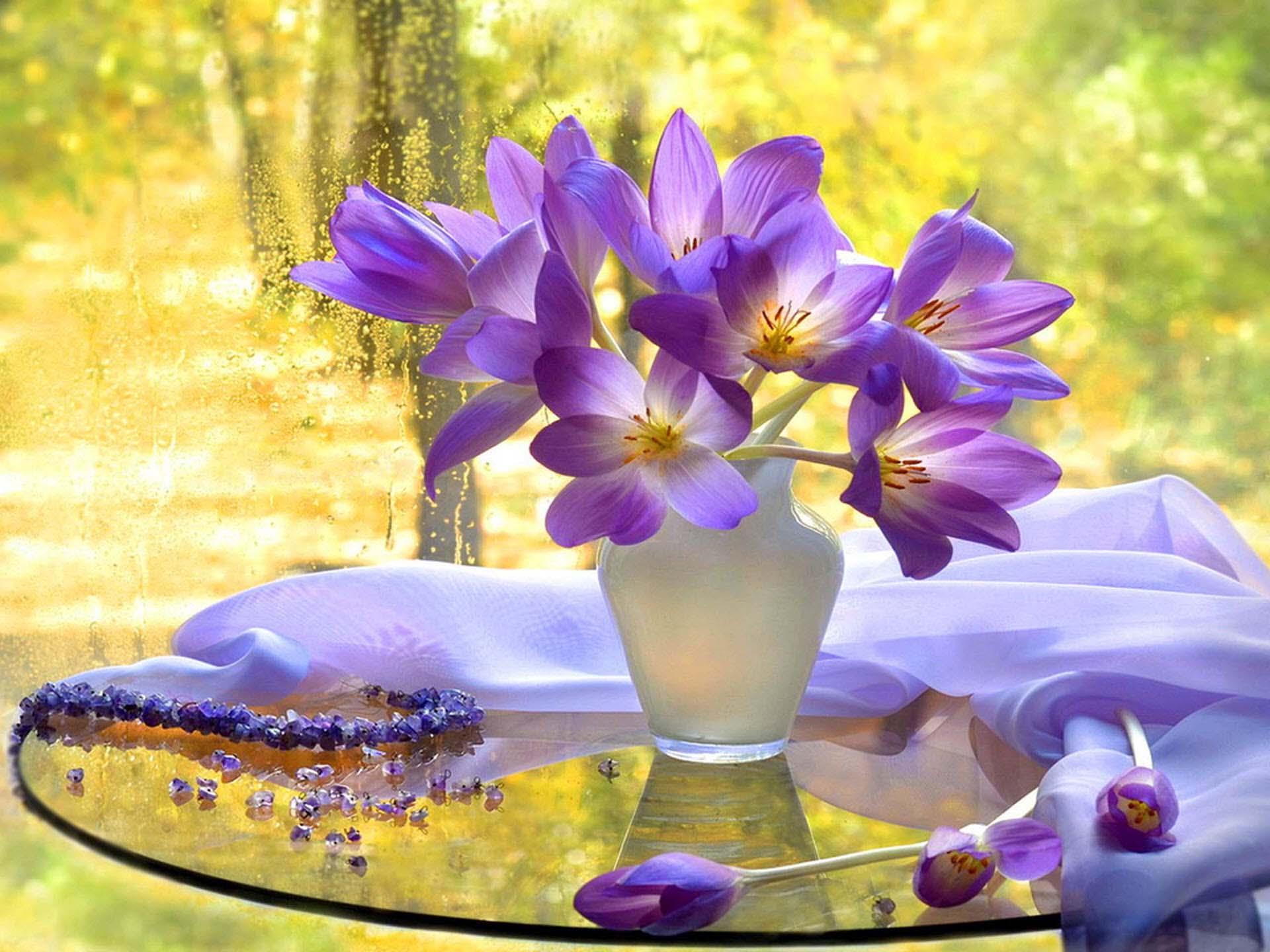 Hình nền lọ hoa đẹp