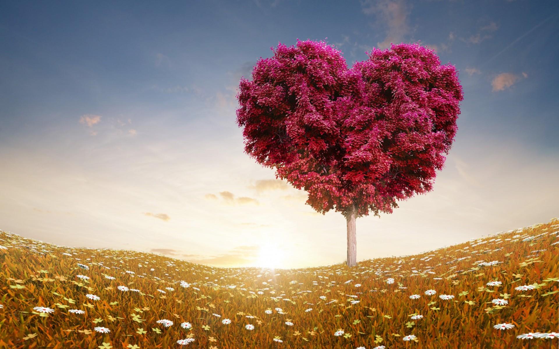 Hình nền về tình yêu đẹp