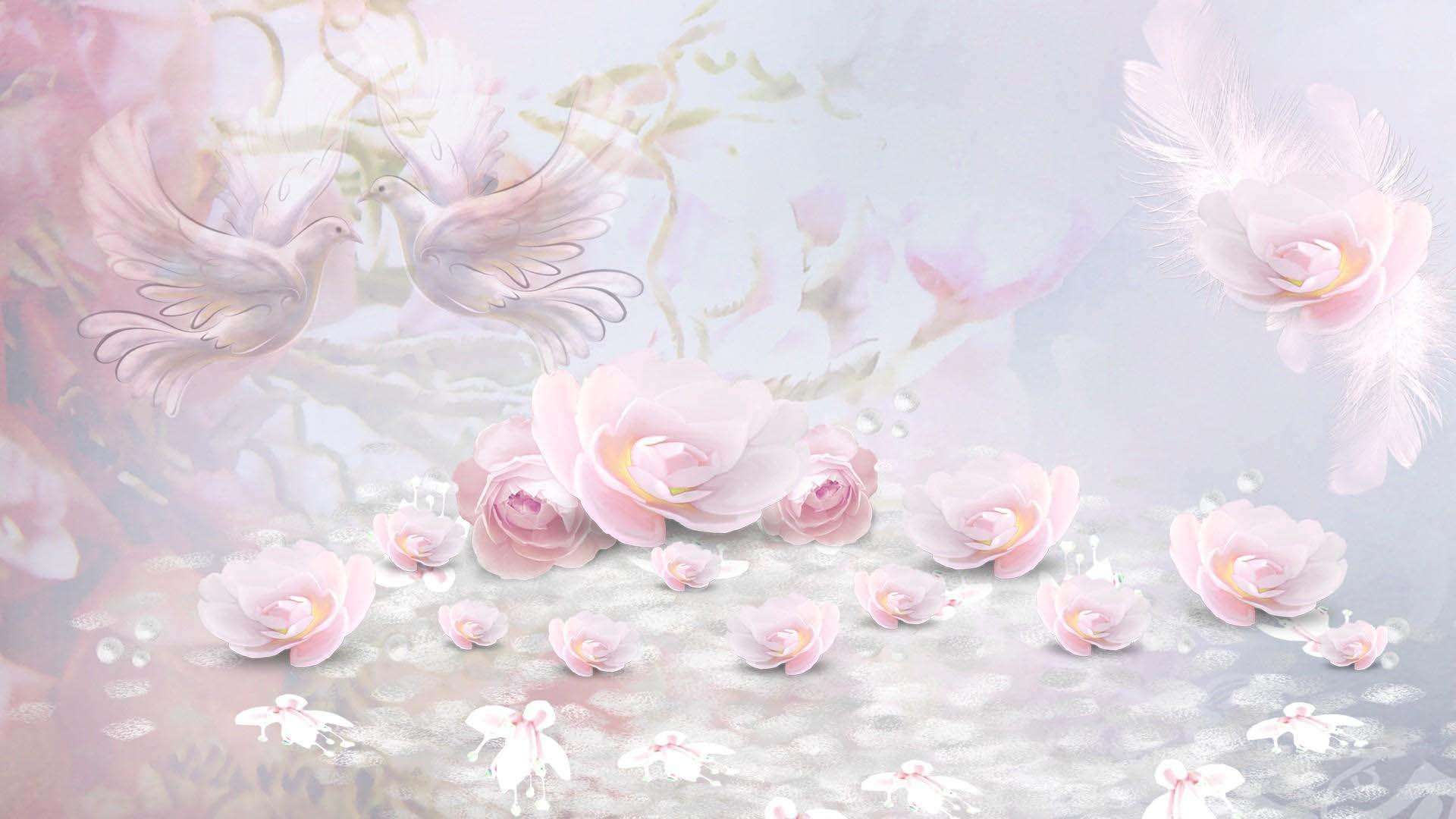 Hình ảnh nền màu hồng phấn dễ thương, cute
