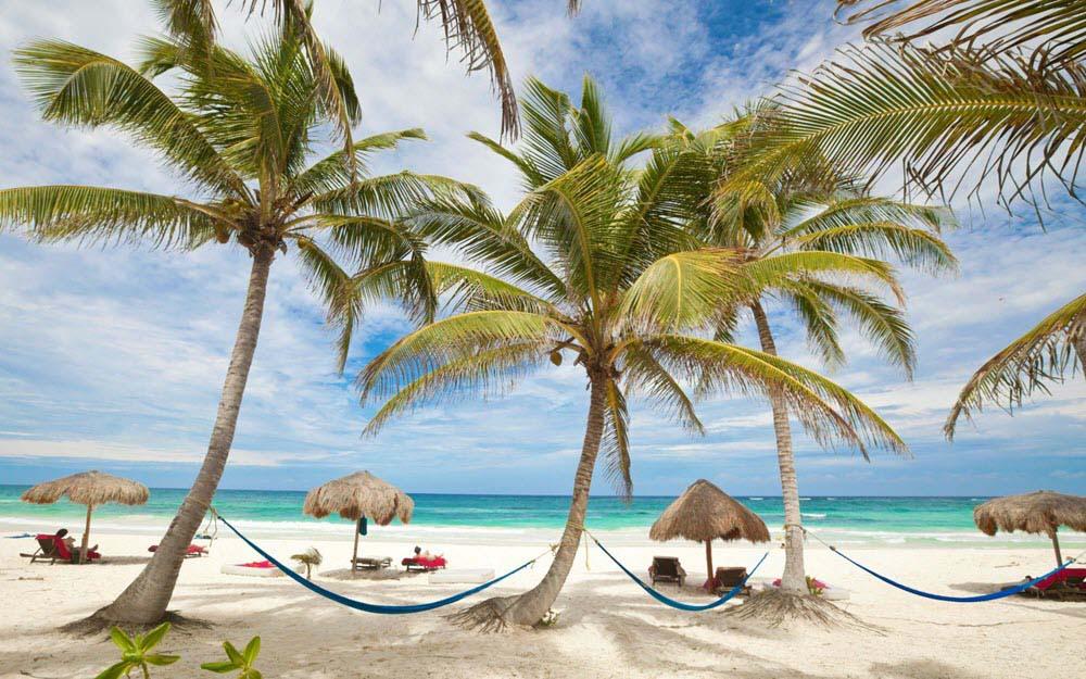 Hình ảnh bãi biển trong xanh