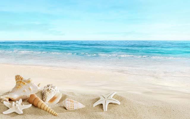 Hình ảnh về bãi biển thơ mộng