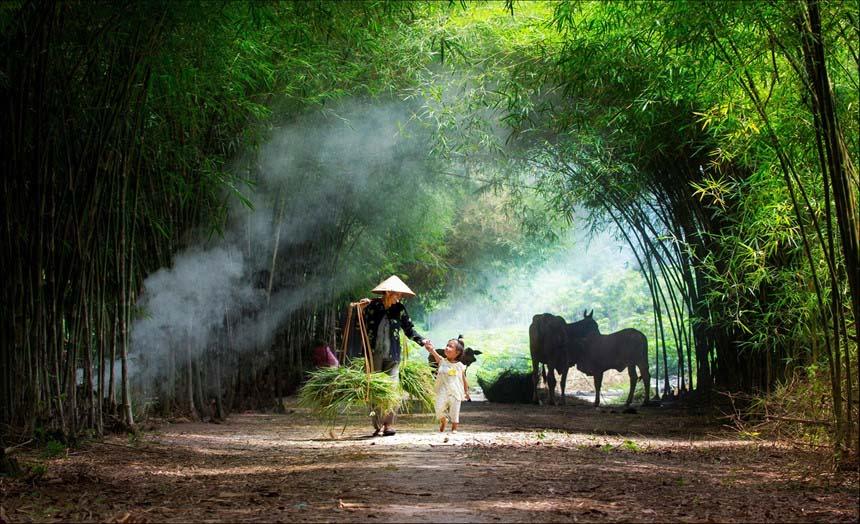Ảnh đẹp người dân làng quê Việt Nam