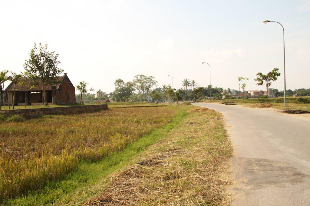 Ảnh làng quê Việt Nam đổi mới