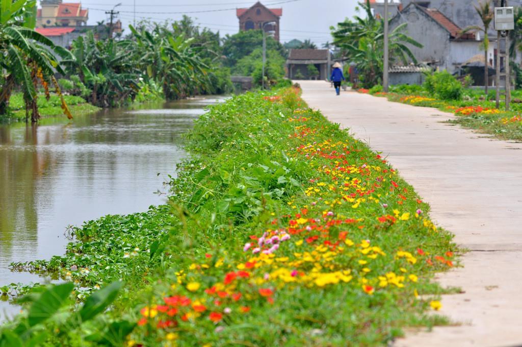 Ảnh làng quê Việt  thanh bình