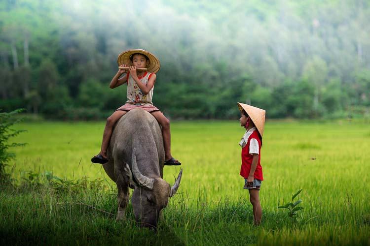 Ảnh trẻ em làng quê Việt Nam