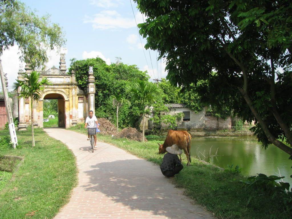Hình ảnh làng quê Việt bình dị