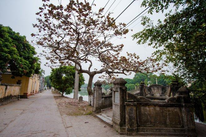 Hình ảnh làng quê xưa
