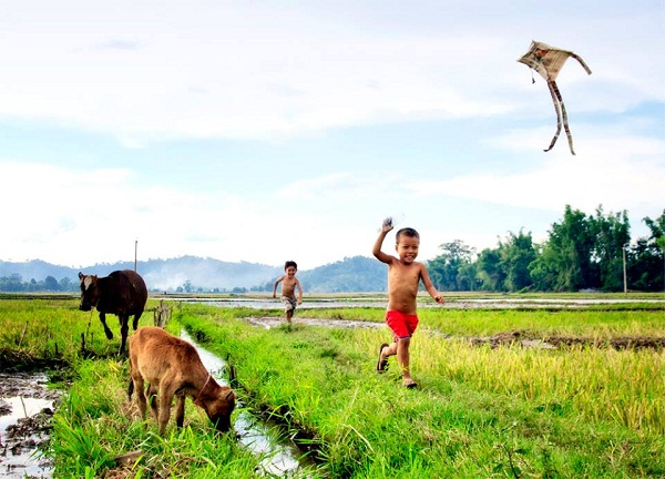 Những hình ảnh đẹp làng quê Việt Nam