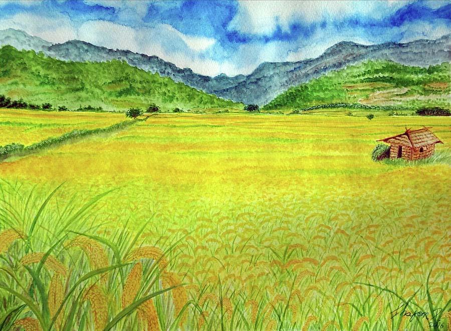 Ảnh vẽ cánh đồng lúa đẹp