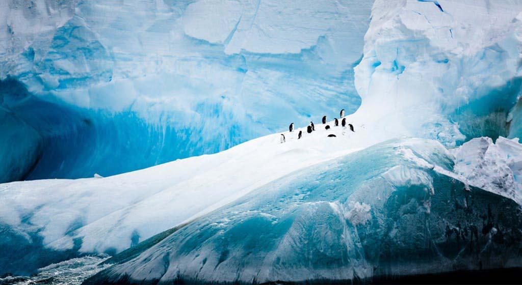 Ảnh đẹp thiên nhiên băng giá