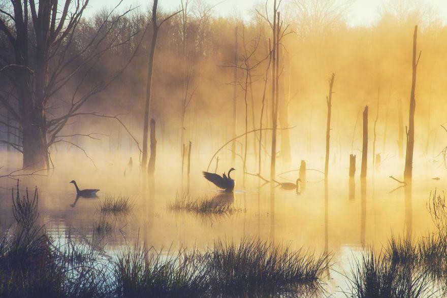 Ảnh đẹp thiên nhiên sáng sớm