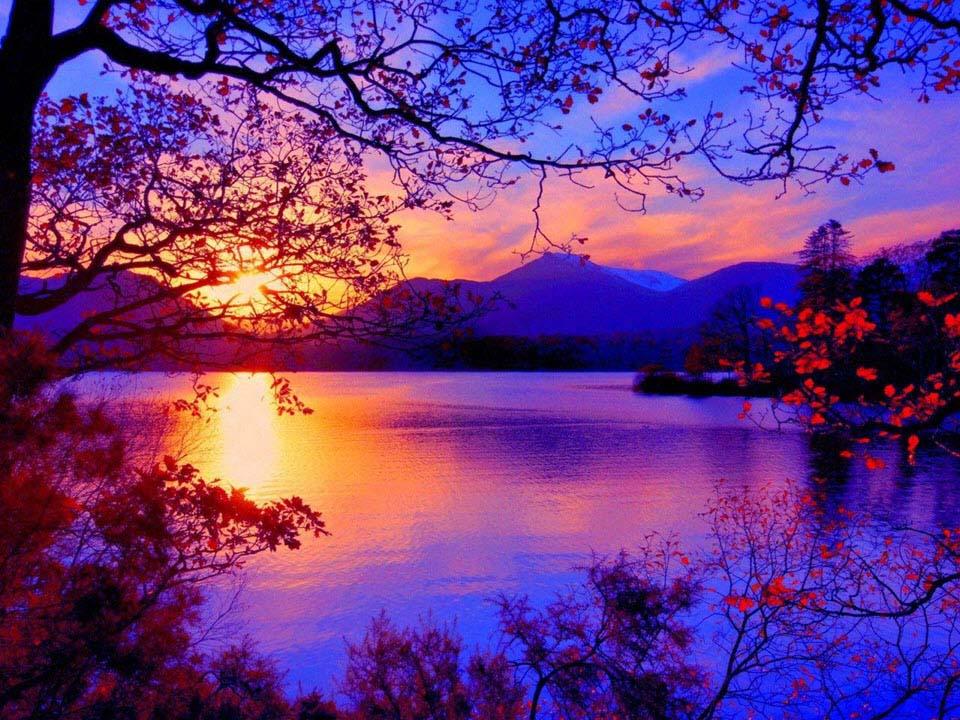 Ảnh phong cảnh tím đẹp