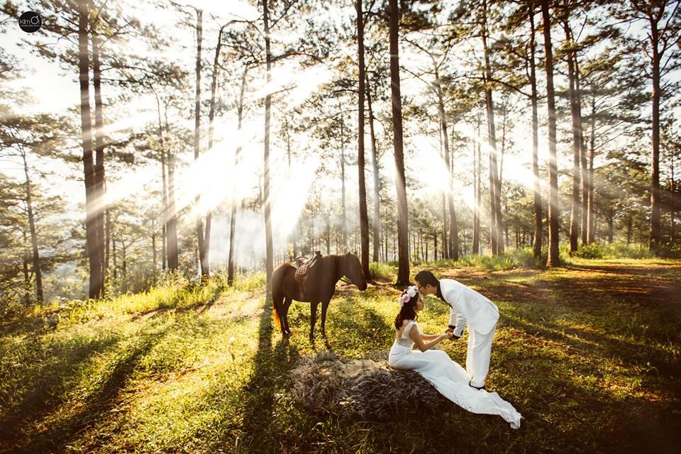 Hình ảnh cưới đẹp trong rừng
