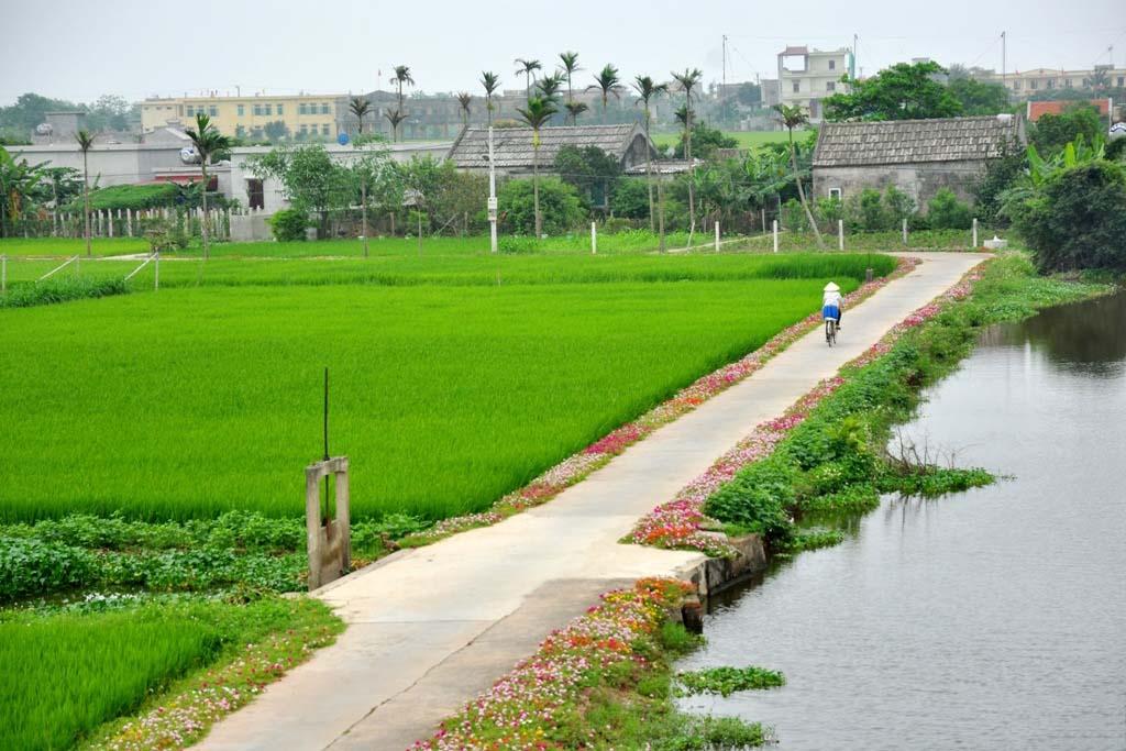 Hình ảnh phong cảnh làng quê