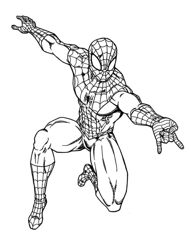 Hình ảnh vẽ người nhện