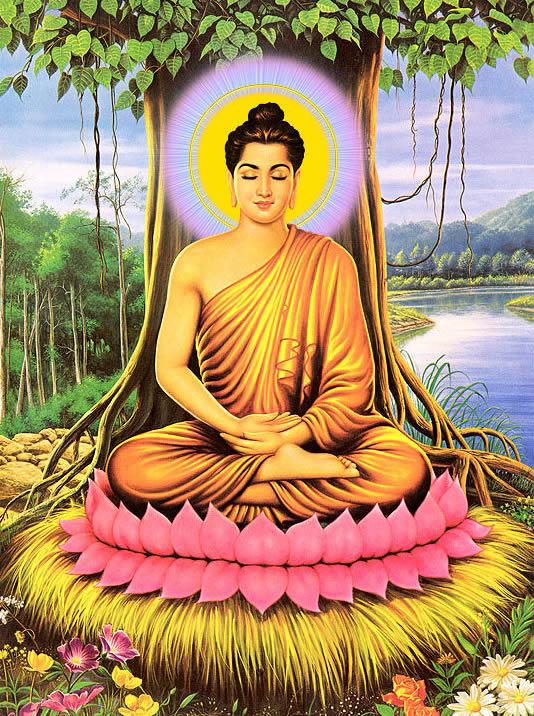 Hình ảnh đẹp Phật đang thiền