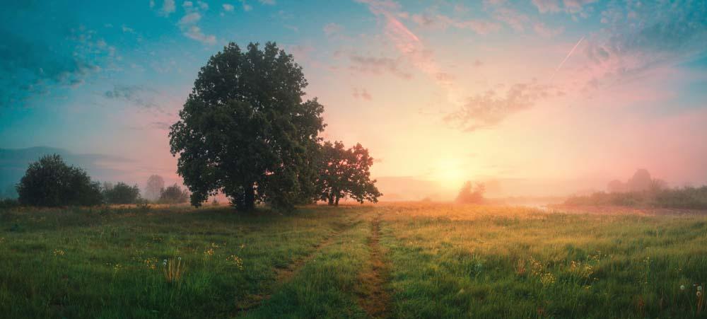 Hình ảnh thiên nhiên đẹp và đặc biệt nhất