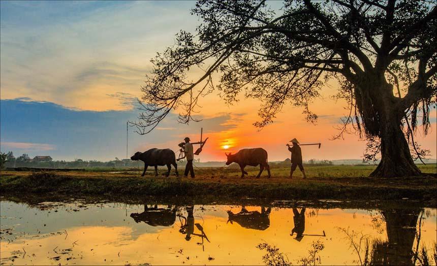 Ảnh đẹp con người đất nước Việt Nam