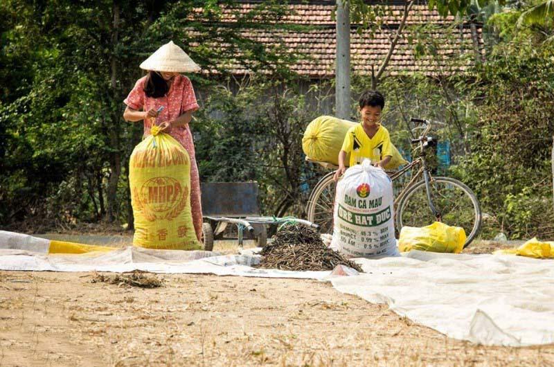 Ảnh đẹp về cuộc sống người dân Việt Nam
