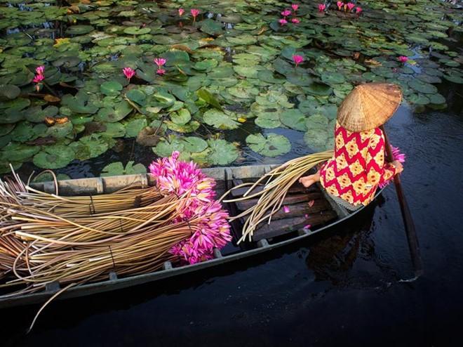 Hình ảnh đẹp đời sống người Việt