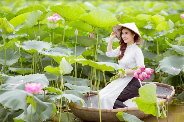 Hình ảnh đẹp hoa sen Việt Nam bên thiếu nữ áo dài