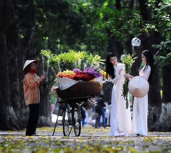 Hình ảnh đẹp nữ sinh áo dài Việt Nam