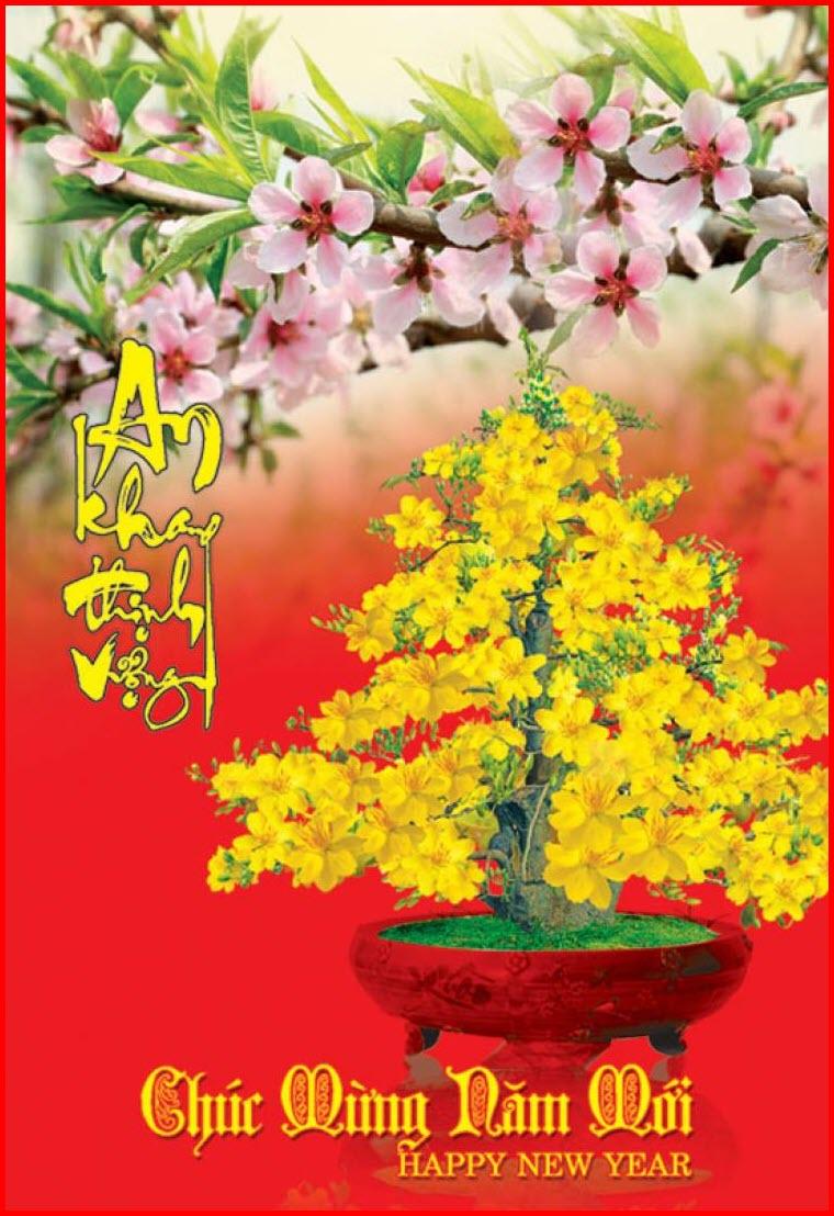 Thiệp chúc tết hoa mai đẹp
