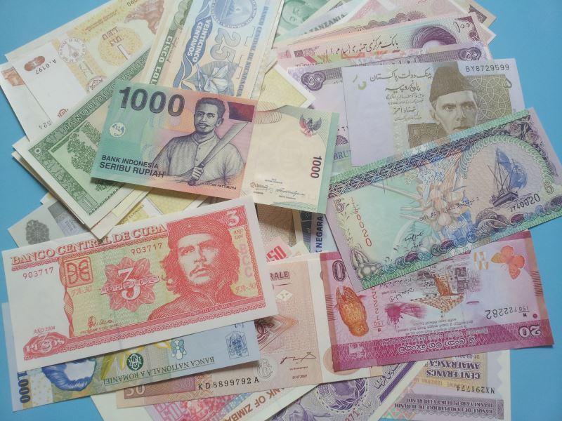 Hình ảnh các loại tiền đẹp nhất