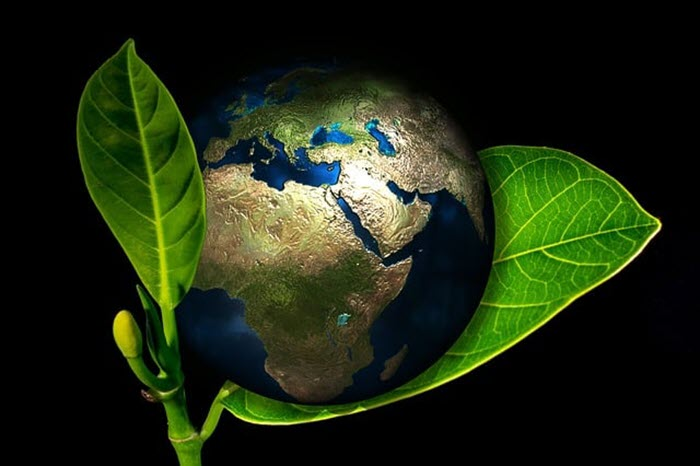 Ảnh đẹp và hay về bảo vệ môi trường